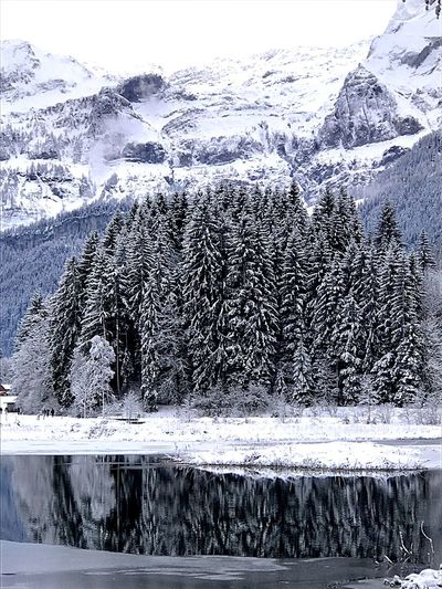 Be. Ready. Snow Cold Temperature Winter Mountain Frozen Ice Nature Beauty In Nature Scenics Tranquil Scene Lake Landscape Tranquility Idyllic Lenk Switzerland No People Frost Outdoors Water Snowcapped Mountain Shades Of Winter