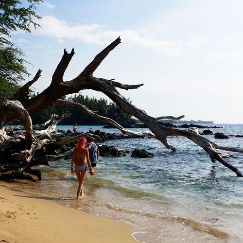 Discover Your City Oceania Drift Bigisland Hawaii