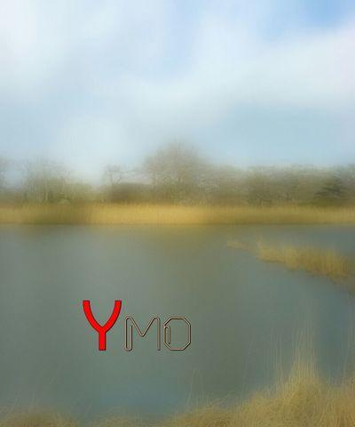 Paysage Landscape Ymoart ArtWork