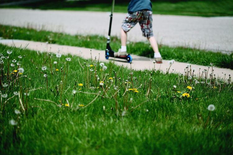 Boy riding push scooter by grassy field