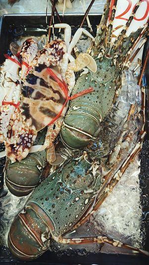 Seafood Sea