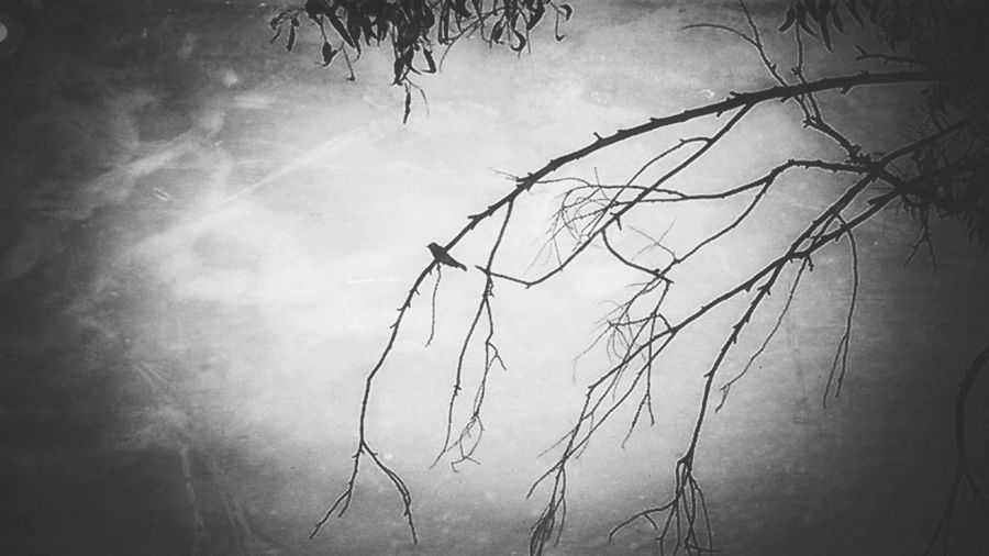_loneliness_ ... Feeling Down Missing You Conceptart Black&white Conceptual Photography  ...