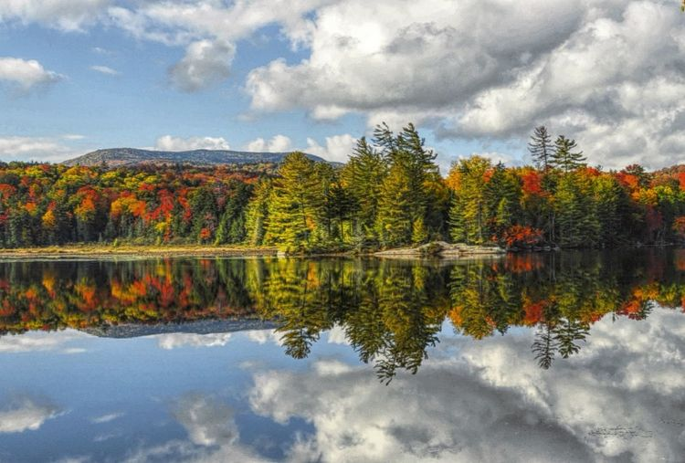 Reflection Tree Water Nature Travel Destinations Autumn Outdoors Change Reflection Lake Tranquil Scene Multi Colored EyeEmNewHere Nature At Work Nature On Your Doorstep Share Your Adventure Mybestphoto2017 Finding New Frontiers My View Right Now Autumn Collection Autumn Upstate New York Adirondack Mountains Natural Parkland Wilderness Power In Nature Millennial Pink