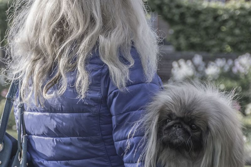 The Street Photographer - 2018 EyeEm Awards Animal Hair Blond Hair Canine Dog Domestic Domestic Animals Focus On Foreground Hair Hairstyle Lifestyles Long Hair Mammal One Animal One Person Pets Real People Shih Tzu Women Love Is Love Streetwise Photography