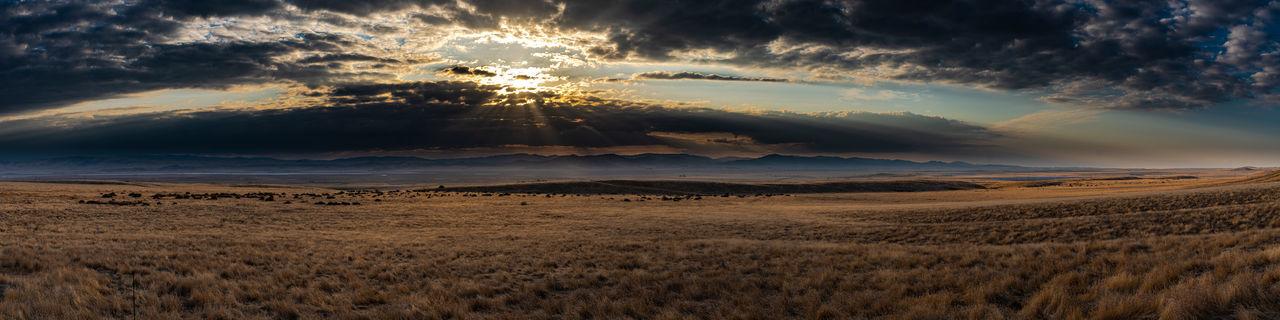 The san andreas fault runs the length of the carizo plains