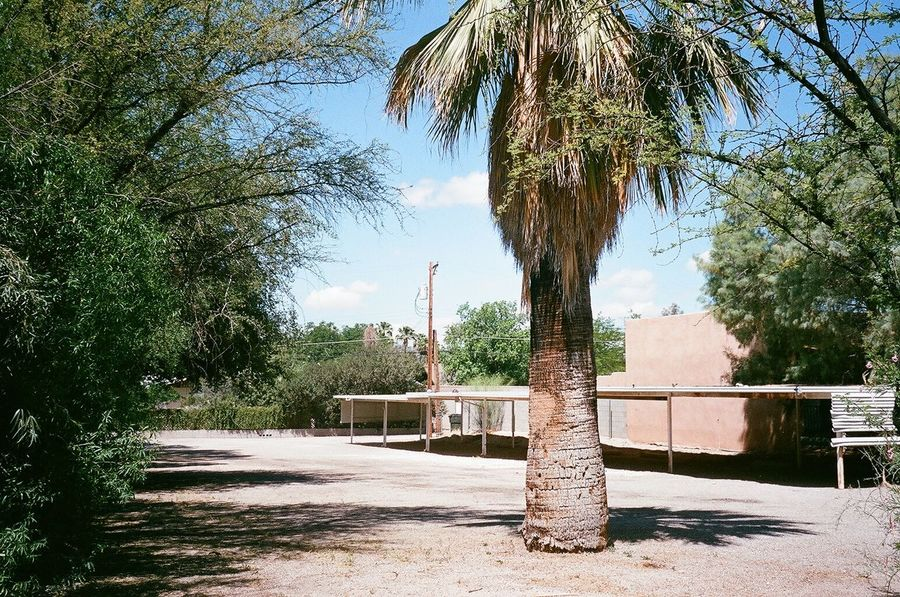 deserted desert scene -- full essay http://www.marklchaves.com/real-estate-here-in-my-bag#0 35mm Film Analogue Photography Architecture Built Structure Carport Contemporary Photography Day Empty Empty Places Filmisnotdead Fine Art Photography Green Color Nature New Topographics No People Outdoors Palm Tree Sky Sunlight Sunny Tree Tuscon, Az Tuscon Arizona