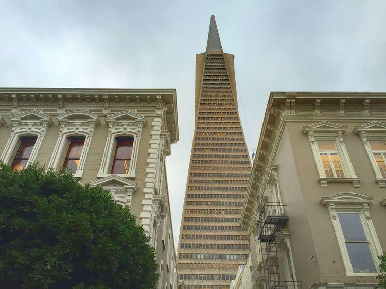 Trans Amerika Pyramide USAtrip USA Carlifornia Trans Amerika Pyramide San Francisco Street Photography Streetphotography City View