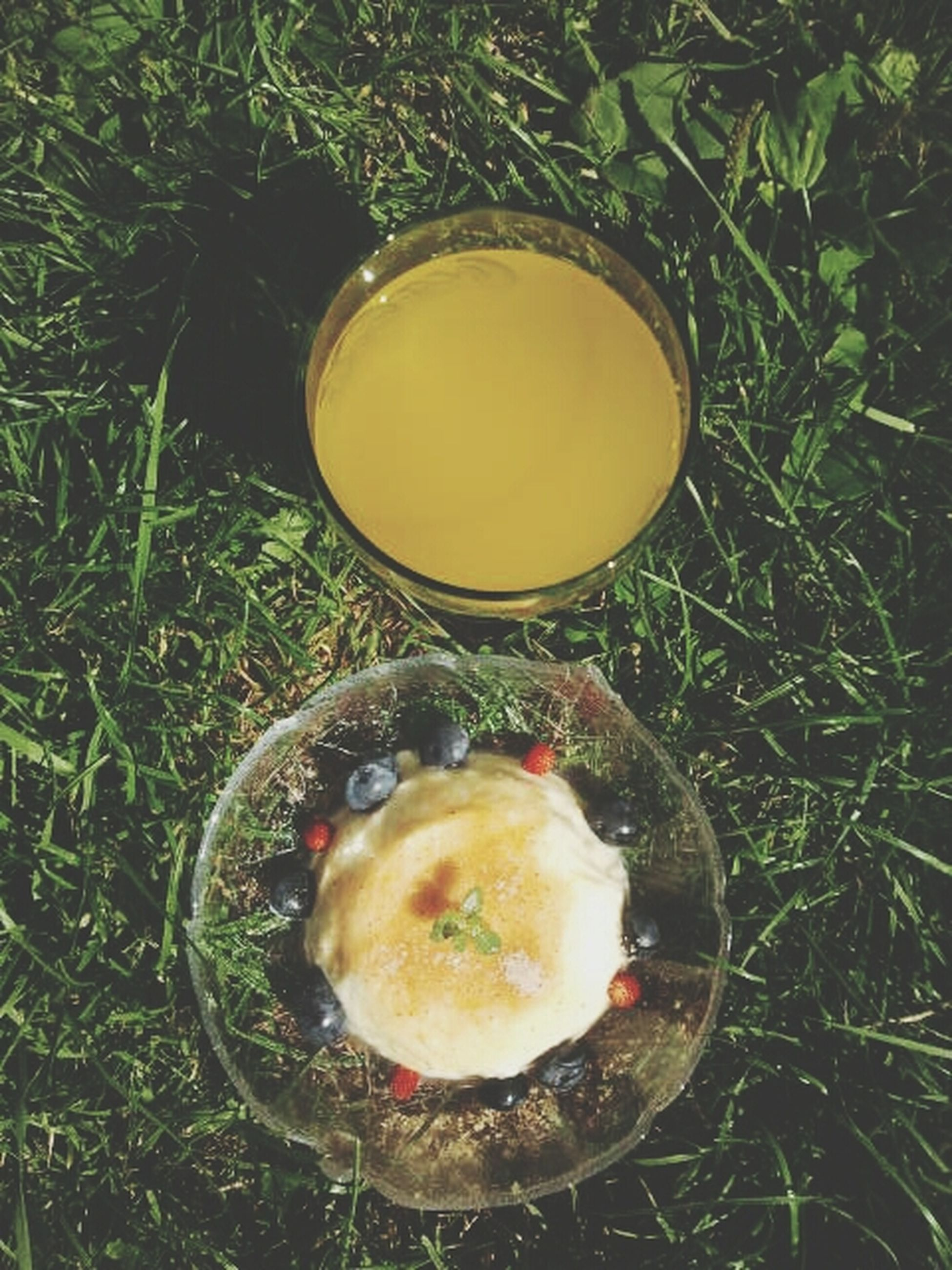food and drink, food, high angle view, freshness, grass, healthy eating, still life, close-up, fruit, bowl, field, directly above, no people, table, drink, ready-to-eat, refreshment, day, sweet food, egg