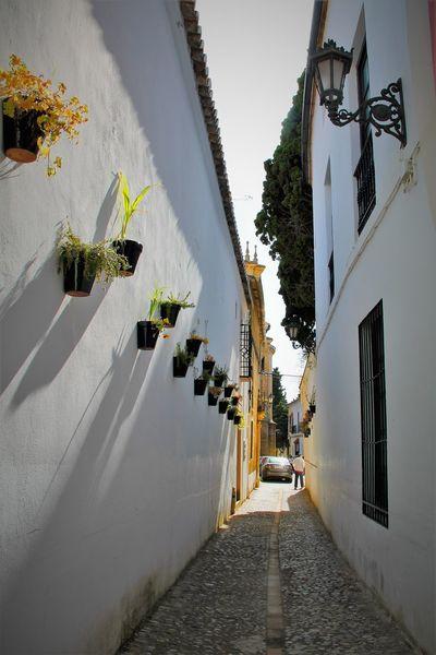 EyeEm Hello World Hi!! Plant Architecture No People El Tiempo Detenido EyeEm Gallery City Tranquil Scene