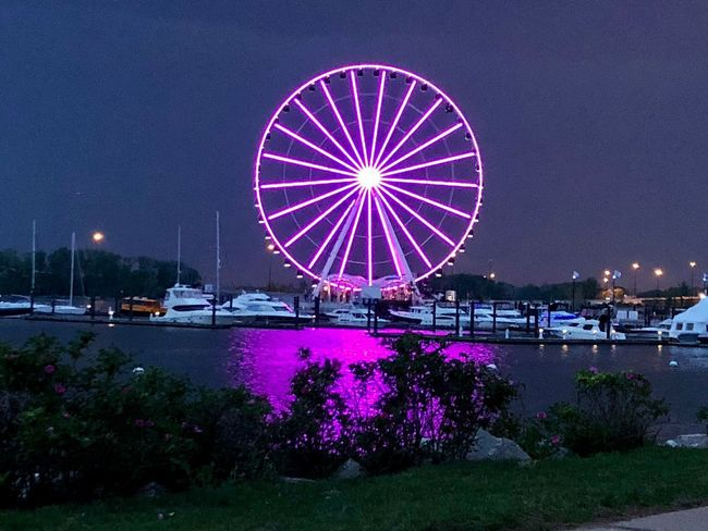 Capitol Wheel Amusement Park Arts Culture And Entertainment Water Night Illuminated Amusement Park Ride Ferris Wheel Nautical Vessel Purple