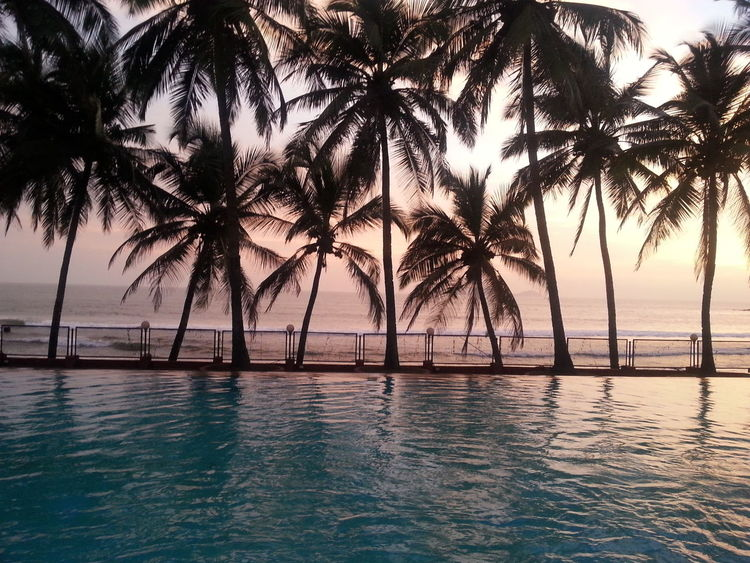 Goa Life Is A Beach Beach Coast Poolside The Great Outdoors With Adobe Silhouette The Photojournalist - 2016 EyeEm Awards Follow The Journey Adapted To The City The Great Outdoors - 2017 EyeEm Awards The Week On EyeEm Lost In The Landscape Connected By Travel Perspectives On Nature