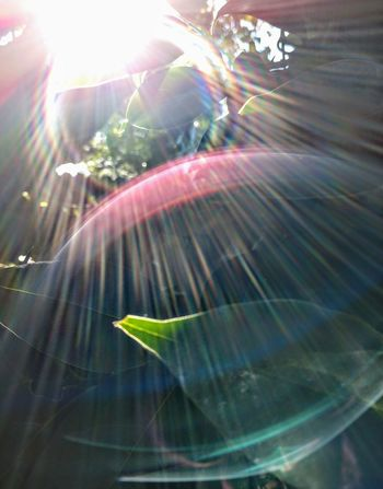 light is music Lifeisbeautiful Abstract Photography Flying Multi Colored Close-up Light Beam Music Concert Refraction Spectrum Sunbeam Shining