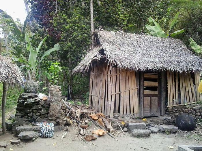 Home sweet home Closetonature Tranquility Peaceful Village Village Life Simplicity