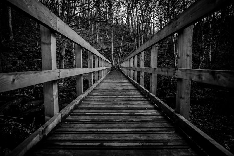 bridge river forest trees dark black and white walk rest mysterious Tree Footbridge Bridge - Man Made Structure Architecture Built Structure Diminishing Perspective The Way Forward