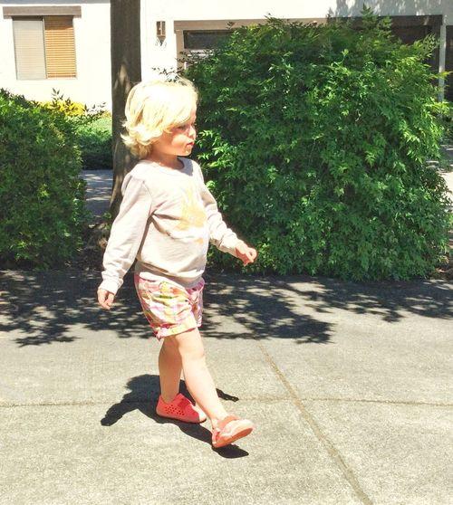 Violet strolling 13048553
