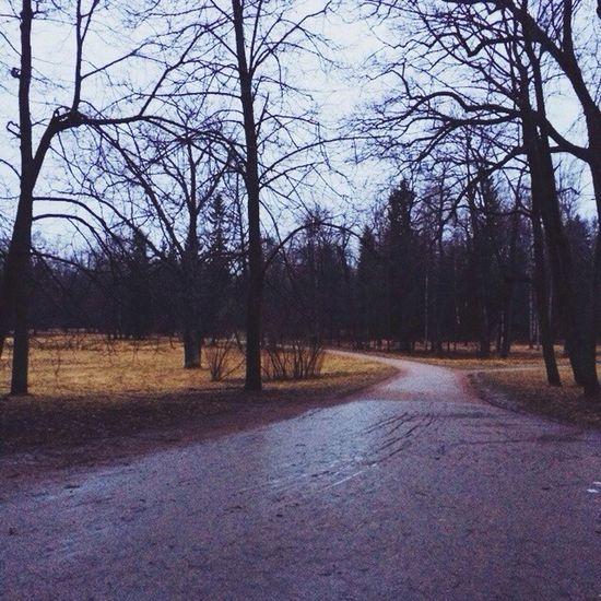 Vscocam Alexanderpark Park Vscorussia russia pushkin