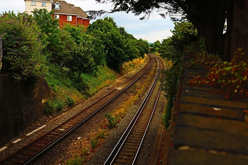Architecture Day Nature No People Outdoors Rail Transportation Railroad Track Railway Track Sky The Way Forward Transportation Tree