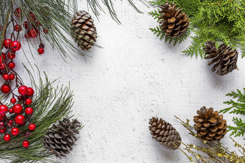 Celebration Christmas Christmas Decoration Christmas Ornament christmas tree Coniferous Tree Decoration Food Food And Drink Fruit High Angle View Holiday Holiday - Event Nature Needle - Plant Part No People Pine Cone Pine Tree Plant Still Life Table Tree