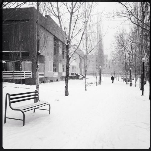 Goodbye Winter Streetphotography Blackandwhite WeAreJuxt.com AMPt - Street