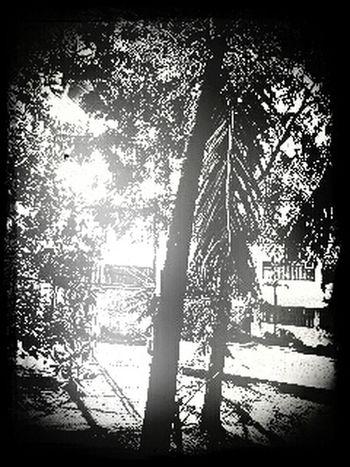broken day Taking Photos Eyeem Philippines Creative Shot Photography