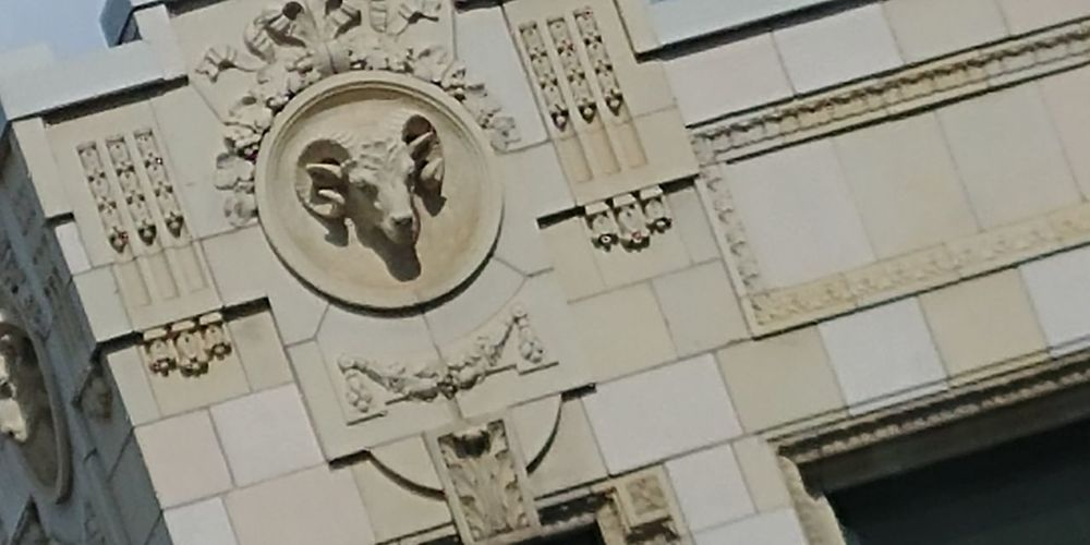 Close-up Outdoors Day Built Structure Architecture The Week On EyeEm Building Exterior Window City Rams Head No People