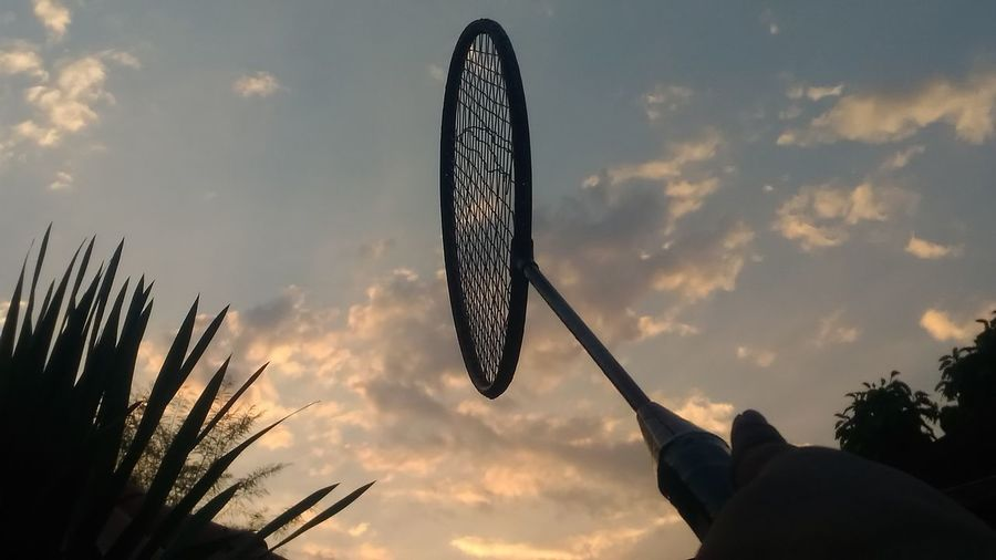 go to play tennis games Tennis Tennis Court Tennis Game Destination Successful Success Player Training Trainners Sport Hobby Play Game Human Hand Silhouette Tree Sunset Sky Cloud - Sky Close-up