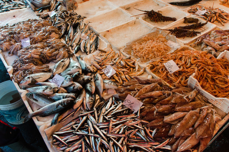 High angle view of fishes for sale at market stall