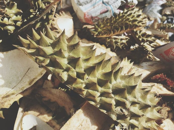 Durian Peel Garbage Heap Outdoors Day Market Smelling Spine Prickle Thorn Asia Fruit Thailand Fruits