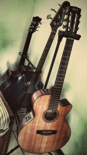 Mini studio. MiniStudio Guitar Bass Caraya Cort Musicman Ernieball