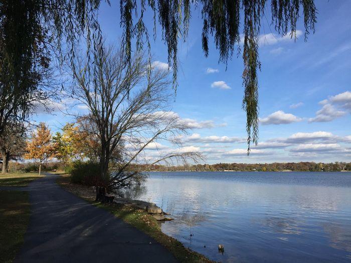 Lake Walking Shore Clouds And Sky