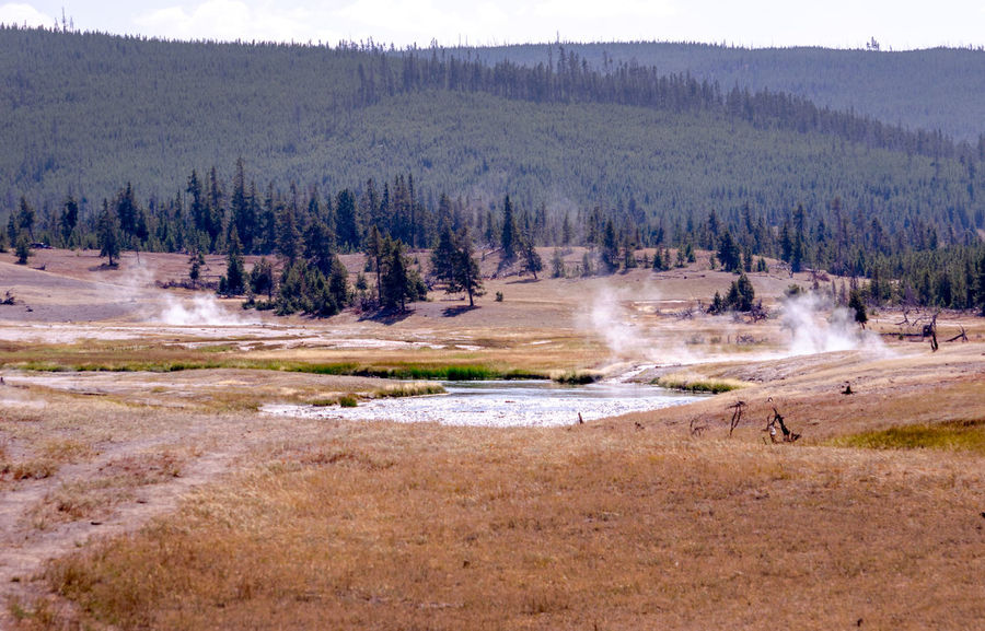 amazing landscapes inside of Yellowstone National park in the lower geyser basin and the artist paint pots Steam Tourist Attraction  Yellowstone National Park Artist Paint Pots Beauty In Nature Fragile Nature Geothermal Activity Scenic View Unique Landscape Vacation Destination Volcanic Landscape