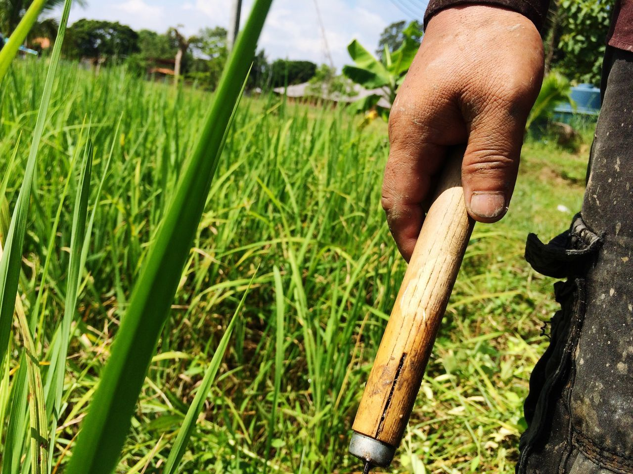 Cropped Hand Of Man Holding Hand Tool Working At Farm