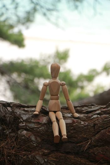 Human Representation Wood - Material Childhood Tree Outdoors Rear View Nature Sky No People Day Beauty In Nature Woodman Wood Art Wooden Woodenperson Beauty Summer Relaxation Nature Woodfriend