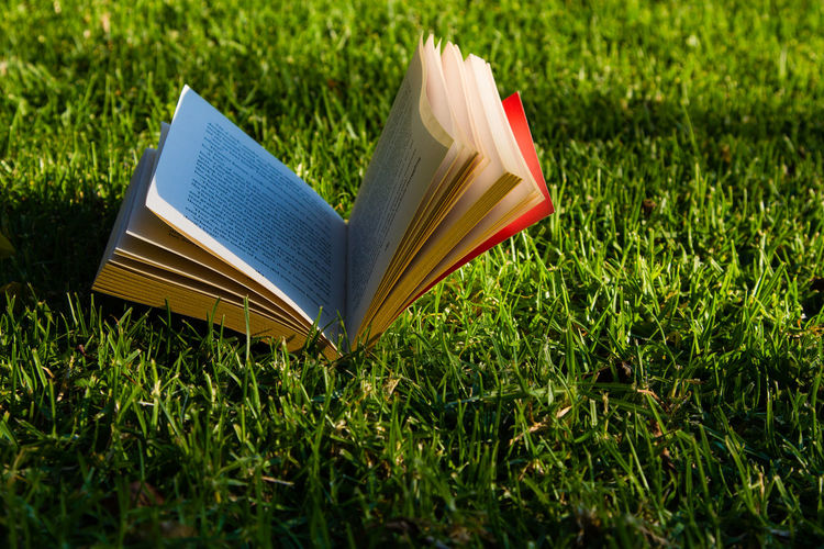 Books everywhere Beauty In Nature Book Close-up Day Education Field Grass Green Color Nature No People Outdoors