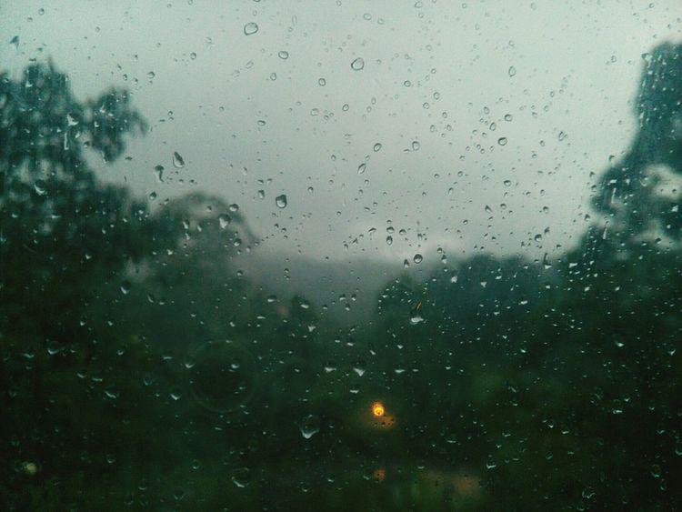La lluvia se mete en mi alma como melancolía nocturna. Teffy Rain Rainy Afternoon. Dew Green Trees Reflection Light Grey Grey Sky Mist Sea Mist