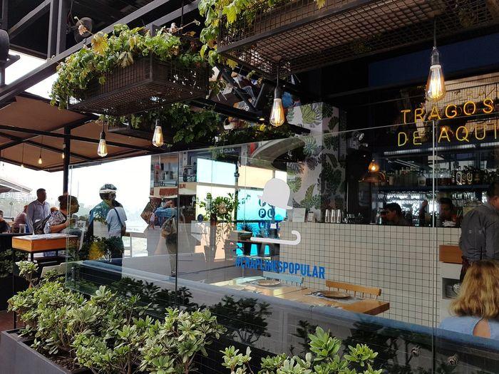 Peru Lima Miraflores Lima Bar Happy Hour Aperitivo Time Aperitif Tree Men Architecture Building Urban Scene