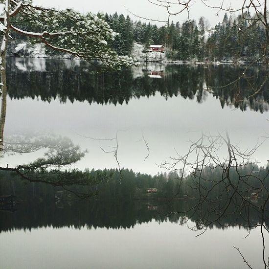 Same view different day Taking Photos Snow ❄ Walking The Dog Walking Around