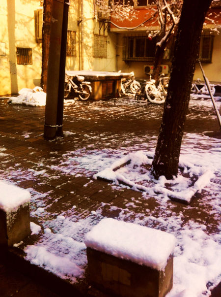Architecture Building Built Structure City Cold Temperature Covering Frozen Nature No People Outdoors Residential Structure Season  Snow Weather Winter 北京 Beijing Pekin Old Buildings Neige❄ 雪 冬 老社区