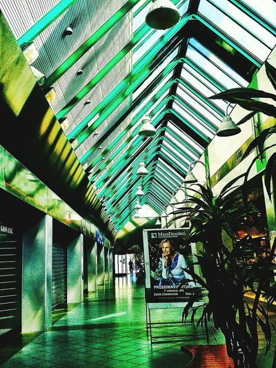 Green architecture or Architecture Green? architecture Eyeem Photography Eyeem Photo Color Eyeem Best Shots Eyeem Gallery Creative Light And Shadow Reflection Authentic Moments Color Photography Pure Photography No Filter