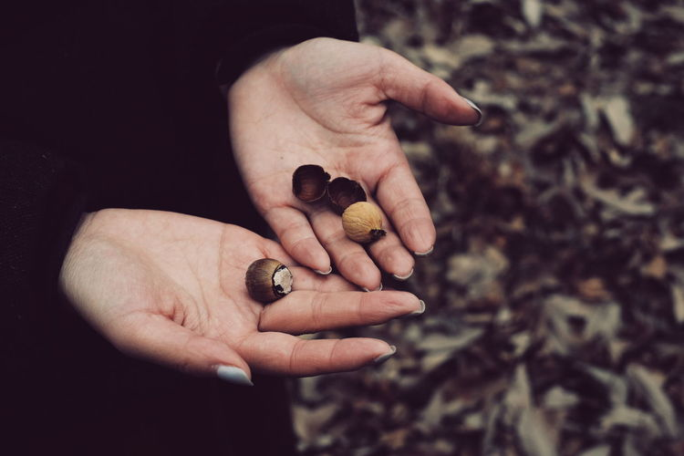 Midsection of woman holding nuts while standing outdoors