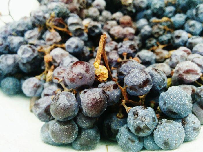 Close-up of black grapes