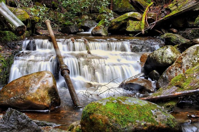 Water Waterfall Rock - Object No People Motion River Nature Long Exposure Outdoors Day Beauty In Nature Tree Tasmania