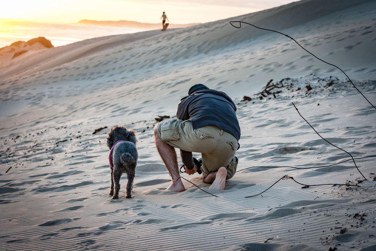 Beach bums Sand Dune Pets Dog Sunset Sand Full Length Beach Desert Shadow Walking Leash Pet Equipment FootPrint Coast Arid Climate Sandy Beach Mixed-breed Dog