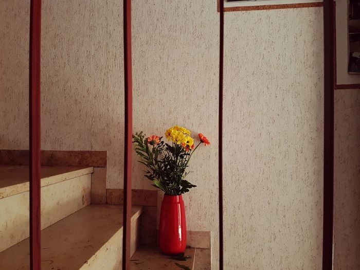 Close-up of vase with flowers against wall