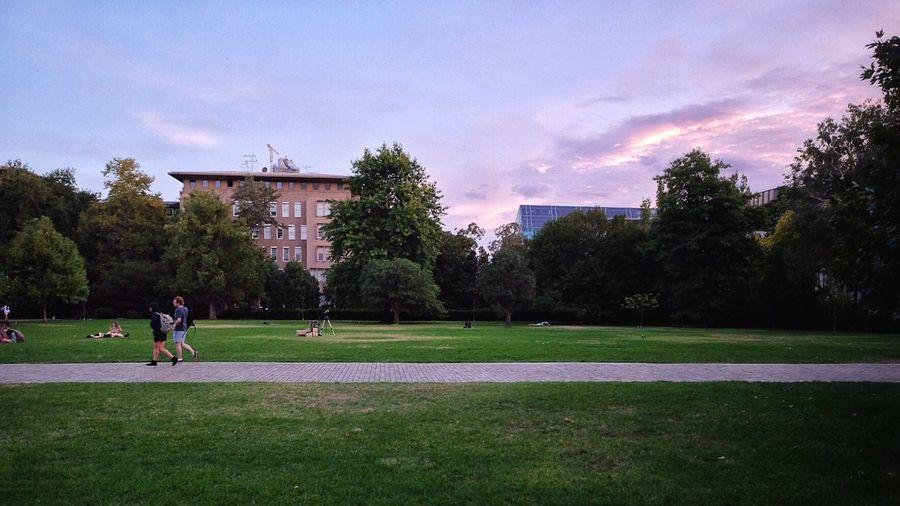 FUJIFILM X-T1 10-24 Australia Melbourne Architecture Landscape_photography Landscapes The University Of Melbourne