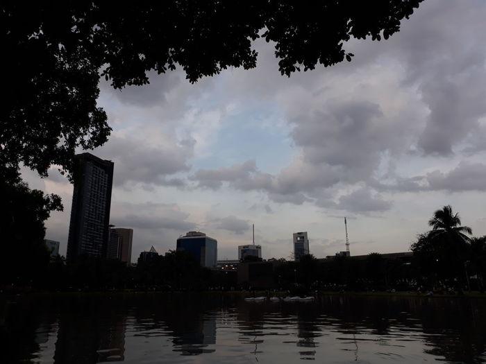 Day City Tree