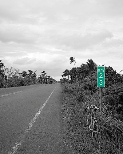 Road Sign Road Communication The Way Forward Guidance Tree Cloud - Sky