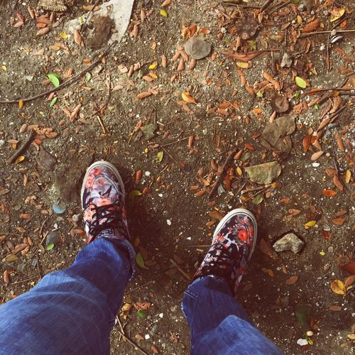 Make them bloom. Personal Perspective Lifestyles Outdoors Autumn Leaf Nike Nikesb Janoski Still Life Beauty In Nature EyeEmNewHere