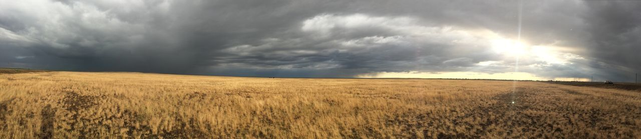 field, landscape, nature, sky, cloud - sky, grass, scenics, tranquil scene, tranquility, beauty in nature, horizon over land, rural scene, storm cloud, no people, agriculture, outdoors, day, growth, wheat