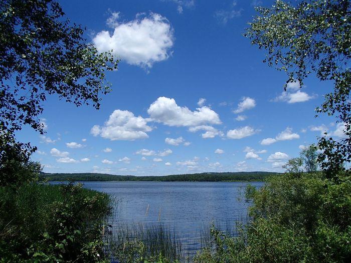 Réservoir Choinière (Parc national de la Yamaska) Plant Sky Water Tree Cloud - Sky Nature Beauty In Nature Scenics - Nature